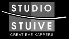 Studio Stuive logo
